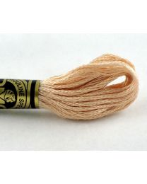 Embroidery floss - Beige